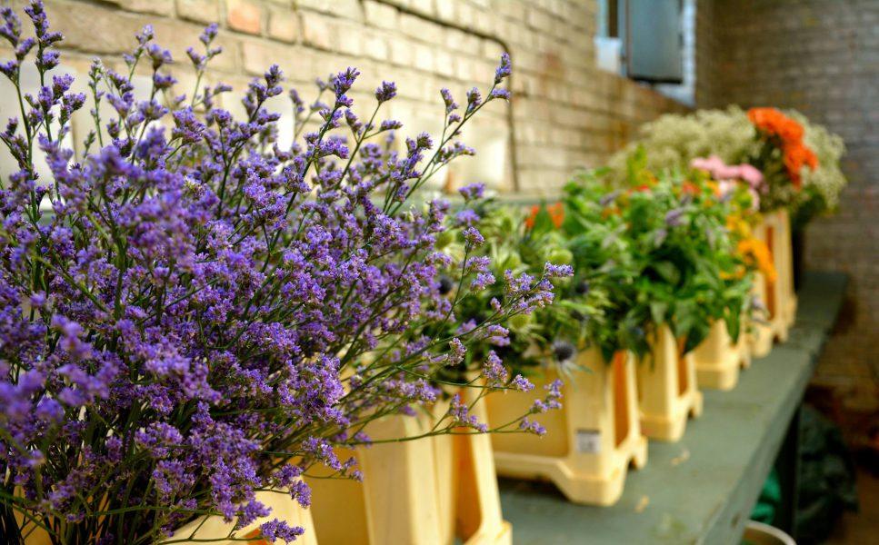 choix-fleurs-atelier-fleural