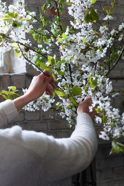 composition-fleurs-blanche-bruxelles